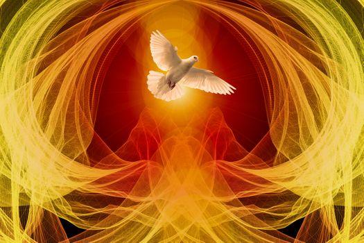 Фото бесплатно голубь, волна, частицы