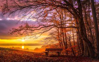 Заставки скамейка, осень, деревья