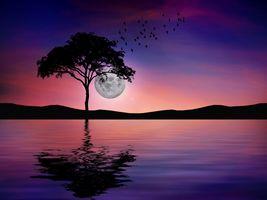 Заставки ночь, отражение, вода