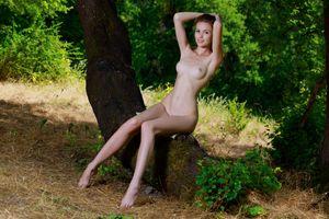 Фото бесплатно голые, обнаженные девушки, поза