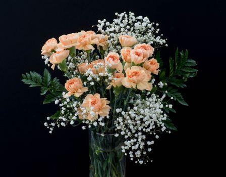 Фото бесплатно гвоздики, букет, ваза