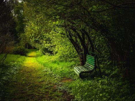 Фото бесплатно парк, тропинка, лавочка