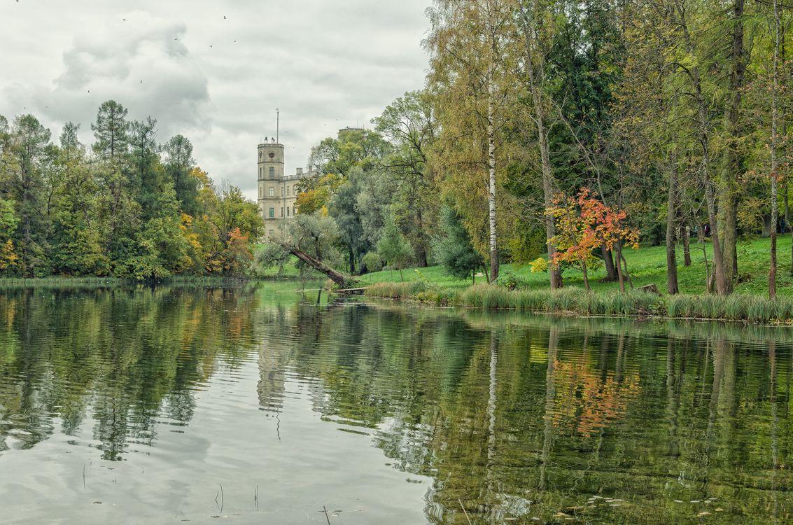 Вид на Серебряное озеро · бесплатное фото