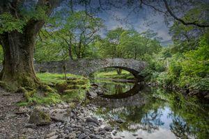 Бесплатные фото лес, деревья, камни, речка, река, природа, мост