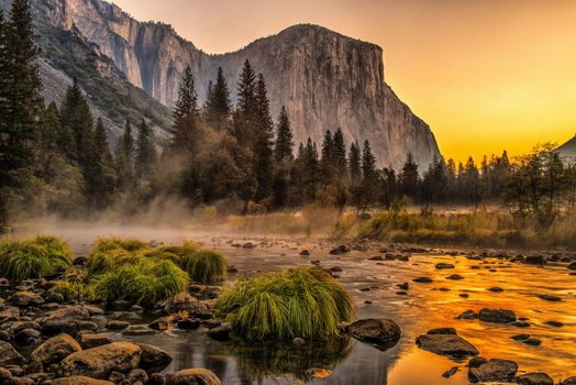 Shallow river in Yosemite · free photo