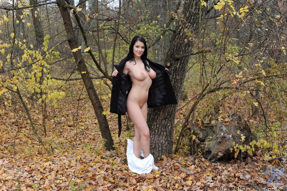 Фото бесплатно Adrianne Black, красотка, голая, голая девушка, обнаженная девушка, позы, поза, сексуальная девушка, эротика, Nude, Solo, Posing, Erotic, фотосессия, sexy, эротика