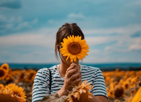 Бесплатные фото девушка,поле,подсолнух,поле подсолнухов,оранжевый