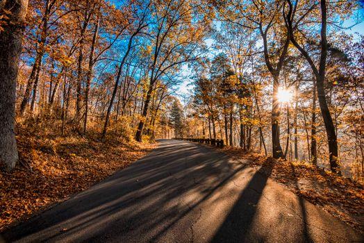 Photo free autumn srpski, road, autumn