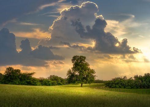 Бесплатные фото закат солнца,поле,деревья,забор,небо,красивые облака,природа,пейзаж