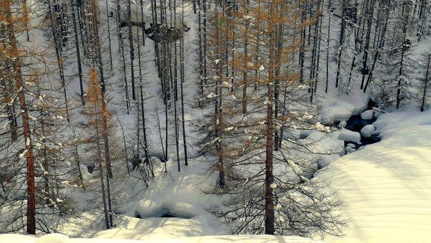 Бесплатные фото зима,лес,снег,речка,сугробы,деревья,природа,пейзаж