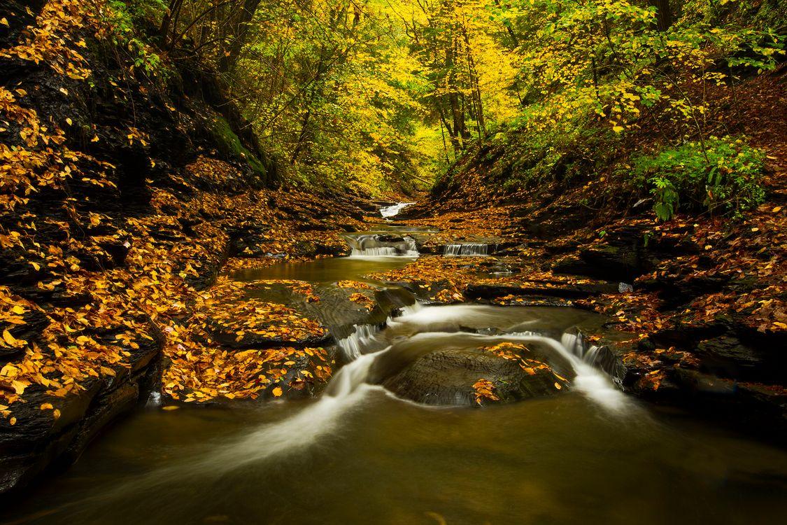 Скачать водопады · бесплатное фото