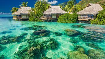 Заставки тропический остров, отдых, отпуск