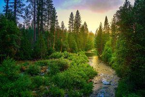 Фото бесплатно природа, йосемитский национальный парк США, пейзаж