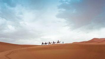 Бесплатные фото пустыня,песок,дюна,небо,приключение,верблюд,дождь