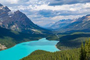 Photo free Peyto Lake, nature, landscape
