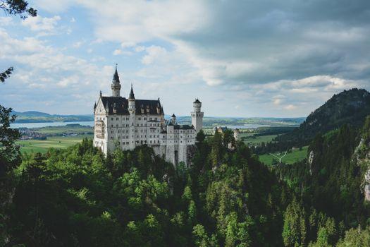 Neuschwanstein and forest · free photo