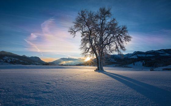 Фото бесплатно зима, закат, небо