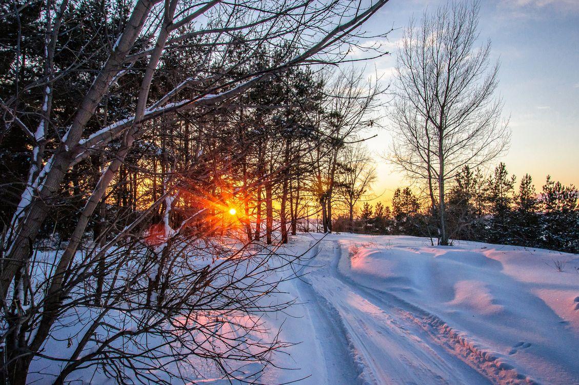 Обои зима, закат, дорога картинки на телефон