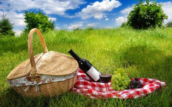 Заставки корзина,виноград,природа,пикник,вино,бокал,трава,деревья
