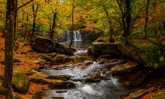 Заставки осенний ручей, осень, водопад