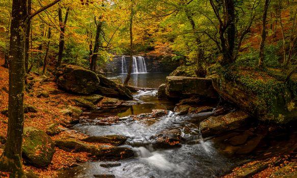 Photo free autumn stream, autumn, waterfall