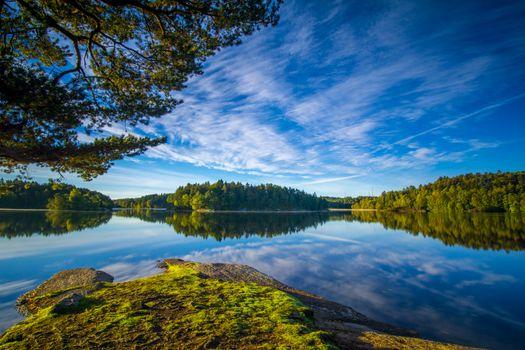 Бесплатные фото Гетеборг,Швеция,озеро,отражение,небо,деревья,природа,пейзаж