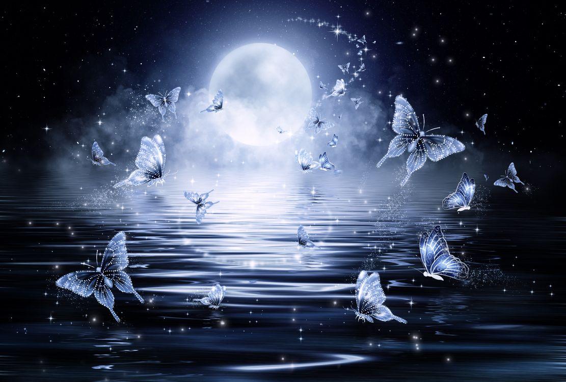 Фото бесплатно луна, водоём, ночь, бабочки, art, рендеринг