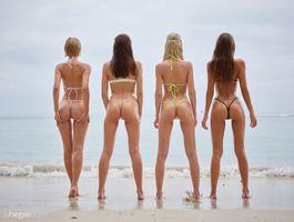 Фото бесплатно Bikini Girls, позы, милашка