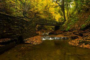 Бесплатные фото осень,река,мост,лес,деревья,водоём,природа