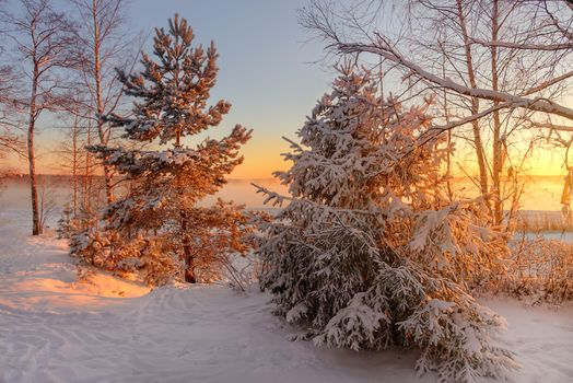 Photo free Veshchevo, Russia, winter