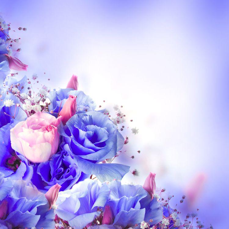 Картина с синими розами · бесплатное фото