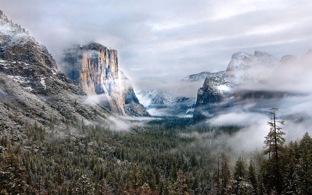 Туман в горах · бесплатное фото