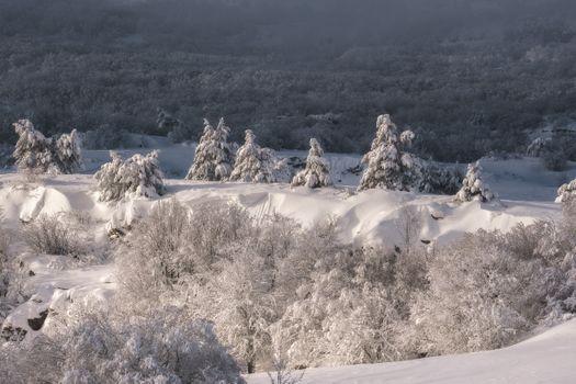 Нетипичный крымский пейзаж · бесплатное фото
