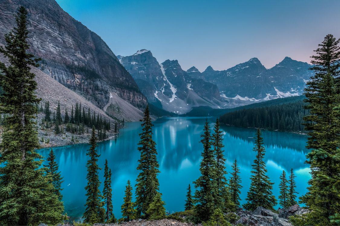 Фото бесплатно Озеро Морейн, деревья, Канада - на рабочий стол