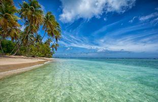 Бесплатные фото остров,Тобаго,Атлантический океан,Tobago,Тринидад,море,пляж