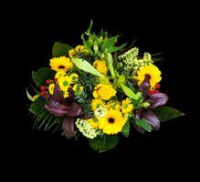 Заставки праздничный букет, цветочный, цветы
