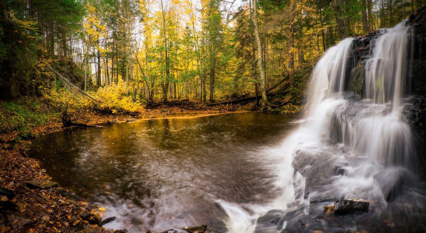 Фото бесплатно осень, водопад, водоём, лес, деревья, природа, пейзаж, пейзажи