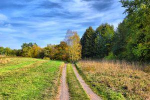 Бесплатные фото поле,дорога,трава,лес деревья,природа,осень,небо