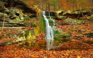 Ручей и маленький водопад в лесу