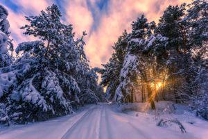 Усыпанная снегом дорога · бесплатное фото