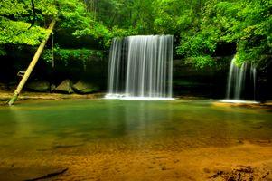 Caney Falls - деревья · бесплатное фото