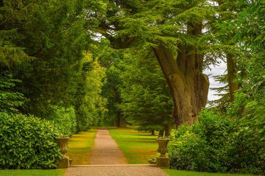 Бесплатные фото Хэнбери-холл,Спа-центр Дройтвич,Дройтвич,Вустершир,Англия,парк,лес,дорога,природа,пейзаж