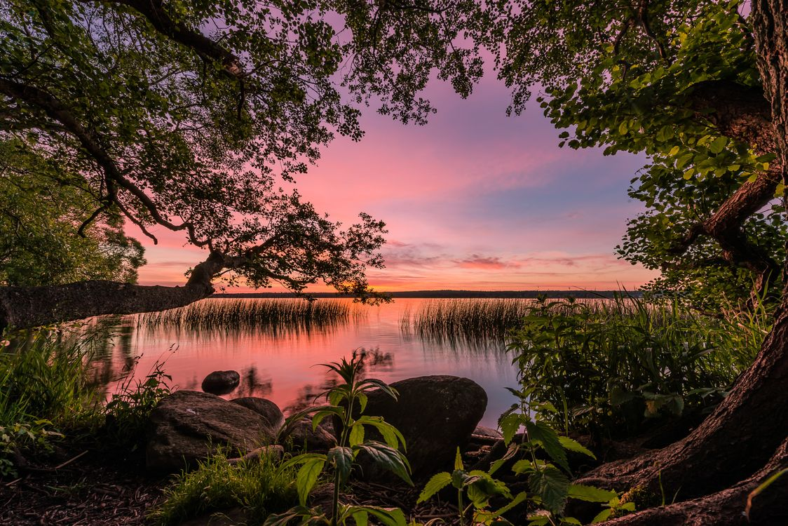 Фото бесплатно Queens, Lake, Sorup, Denmark, пейзажи