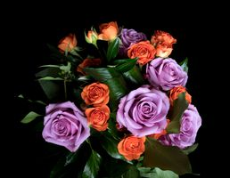 Цветы с добрым утром =)
