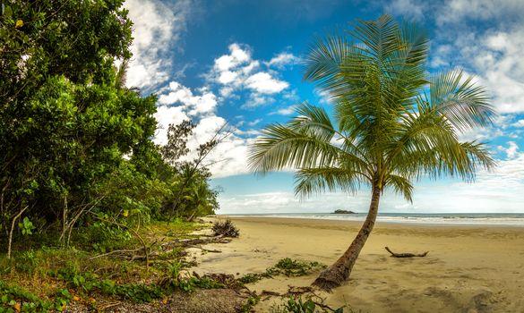 Заставки Тропический лес Дейнтри, Квинсленд, Мыс Скорби