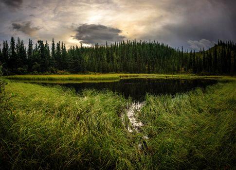 Photo free Denali national park, Alaska, sunset