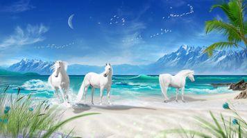 Бесплатные фото море,берег,лошади,белые лошади,волны,горы,пальма