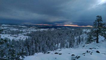 Заставки Снег в предгорьях Сьерра-Невады,зима,снег,закат,лес,деревья,сумерки