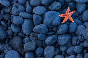 Фото бесплатно текстура, композиция, камни