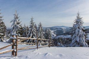 Бесплатные фото зима,горы,снег,сугробы,деревья,ёлки,природа
